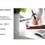 Buhalterinės apskaitos individualios mokymo paslaugos.