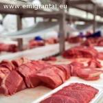 Reikalingi darbuotojai pakavimas mėsos